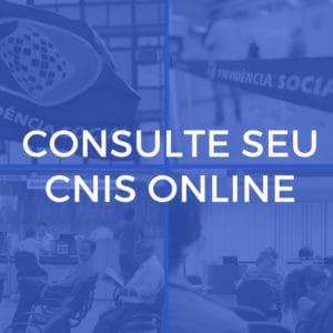 Aprenda como consultar o seu CNIS INSS